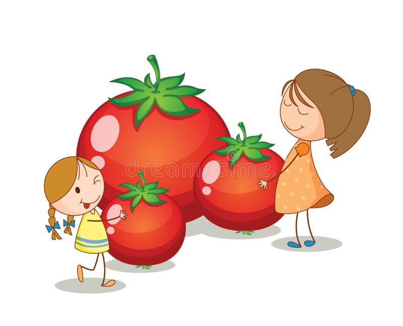 Filles et tomates illustration stock