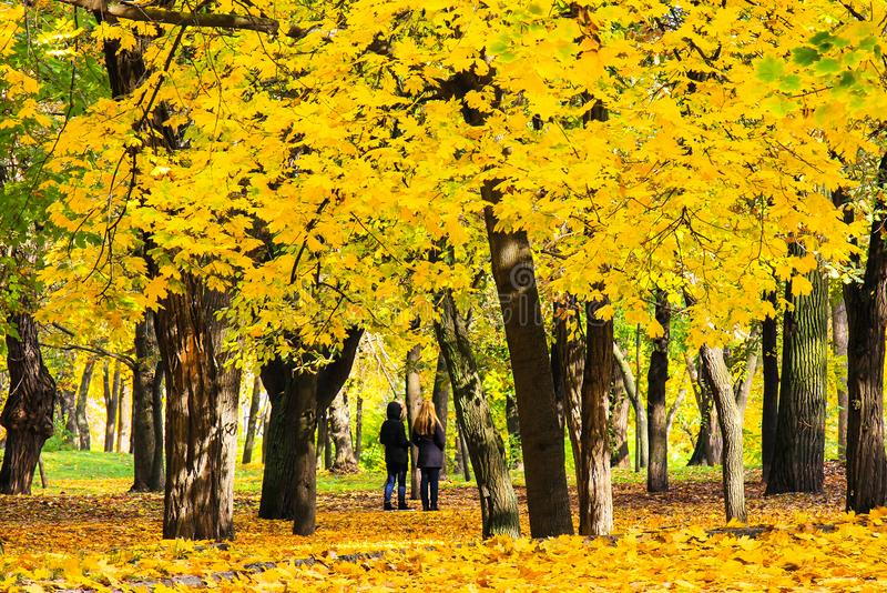 Filles marchant en parc d'automne de Shevchenko parmi les feuilles jaunes tombées, Dnipropetrovsk, Ukraine photographie stock