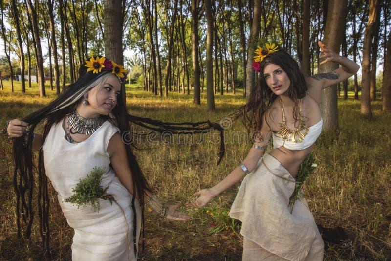 Filles païennes dans la danse de forêt image libre de droits
