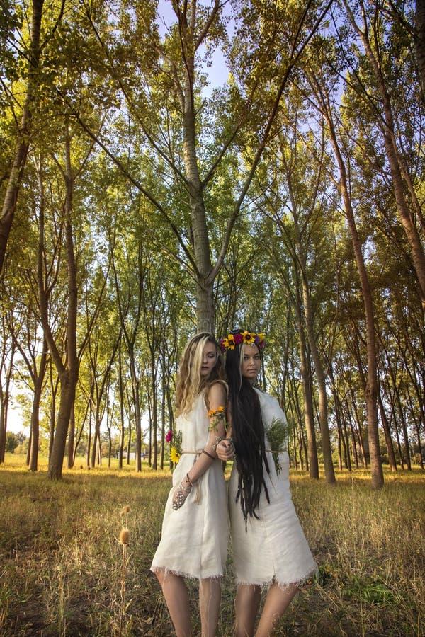 Filles païennes dans la forêt par l'arbre photo libre de droits