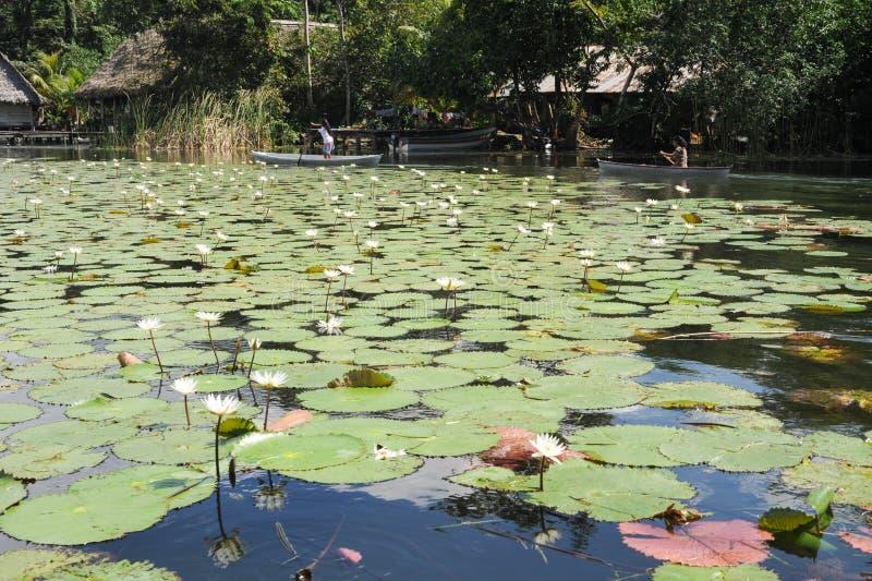 Filles sur le canoë à l'isla De Las Flores sur la rivière Dulce près des vies photo stock