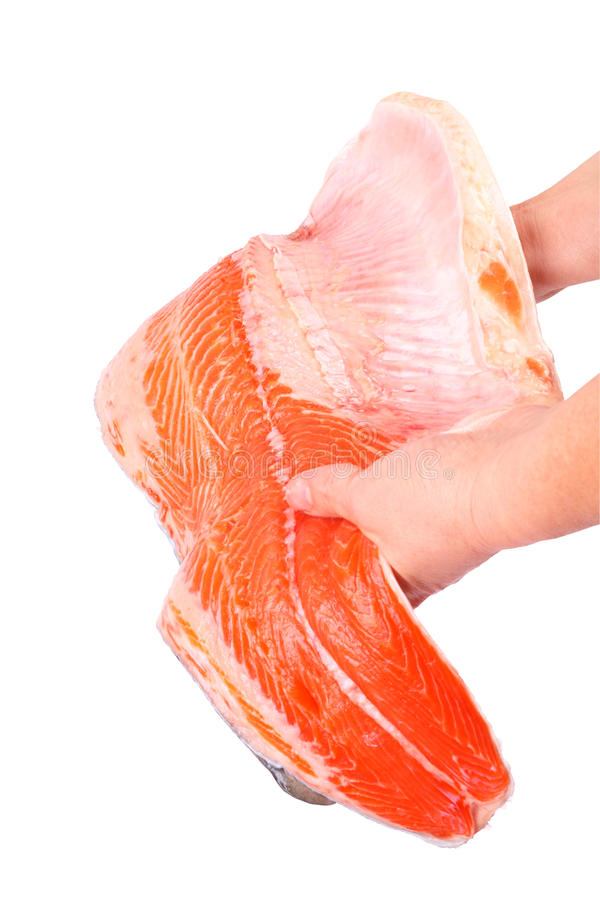 Download Fillet trout stock photo. Image of image, white, color - 11866722
