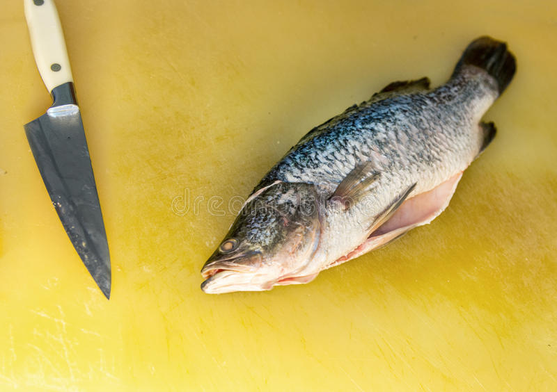 Filleting fish. On a cutting board in a restaurant kitchen,prepare for cooking royalty free stock photos