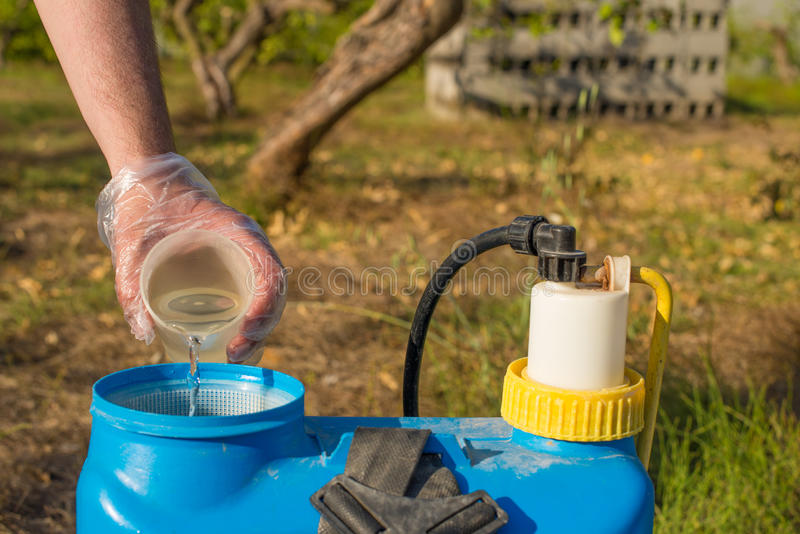 Filling in pesticide. Hand with plastic glove filling pesticide into a garden sprayer royalty free stock images