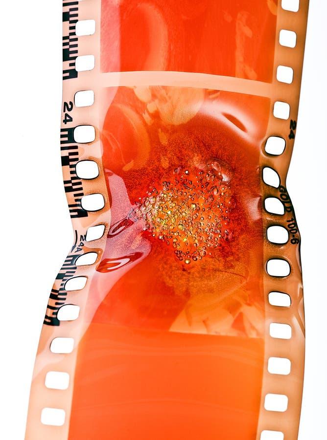 Film brûlé image stock