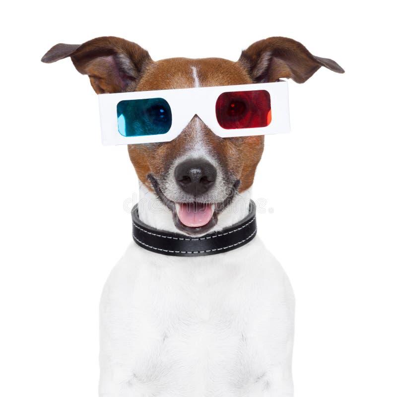 Film-Kinohund der Gläser 3d stockfoto
