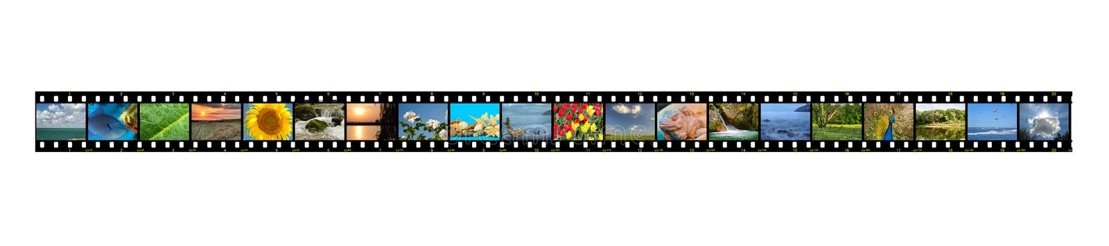 Film With Photos Stock Photography
