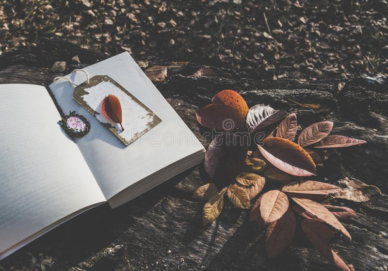 Film styled image of opened book with bookmark stock photos