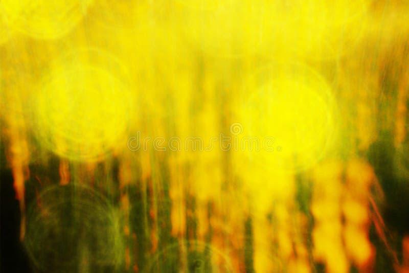 Filmeffekt Defocused Blumen und Gras für Hintergrund Verwischt und De fokussierte frische gelbe Blüte und grüne Stielblätter stockfotografie