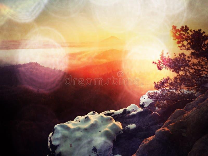 Filmeffekt Erste Pulverschneedecke auf Sandstein schaukelt über Talpark Schwerer Nebel im Talgebrüllstandpunkt Kühles herbstliche stockbild