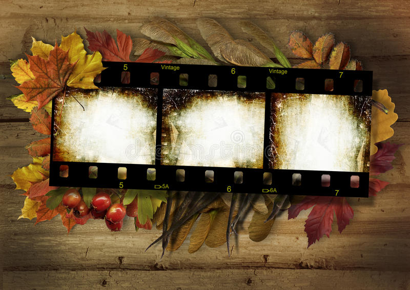 Filmez la bande et la frontière d'automne sur le fond en bois de vintage photographie stock libre de droits