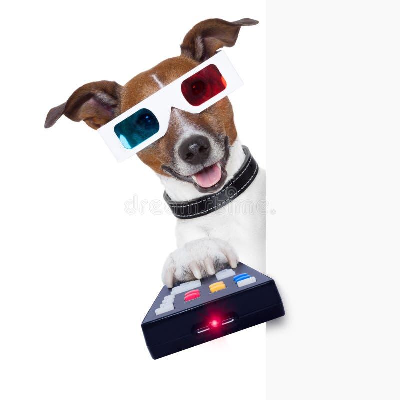 Filmhund der Gläser 3d stockfoto