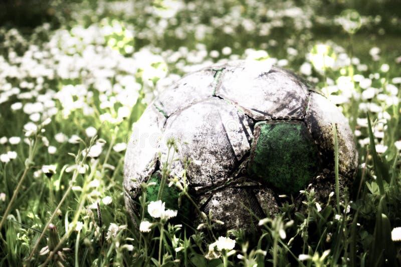 Filmkorrel Oude die in de hoge grasbloem wordt verborgen en ingediende voetbalbal royalty-vrije stock foto's