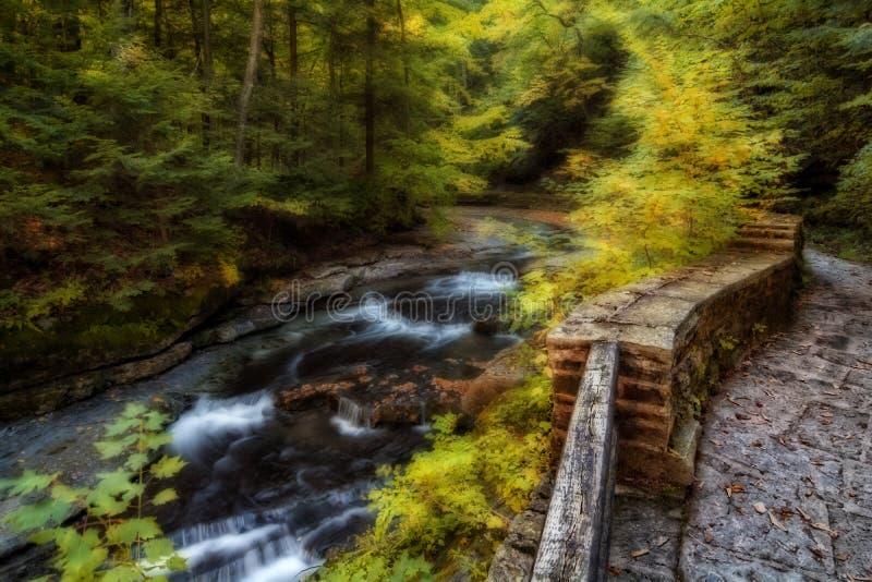 Filmore Glen Waterfalls royalty free stock image