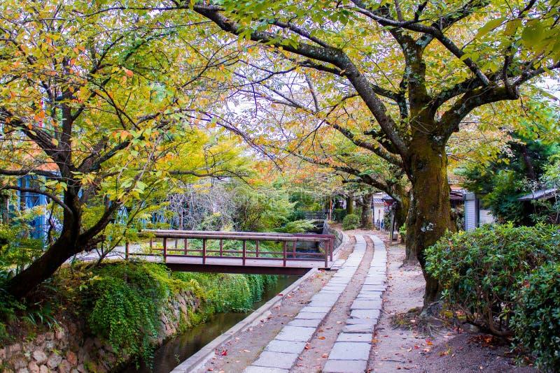 Filosofen går i Kyoto, Japan royaltyfri fotografi