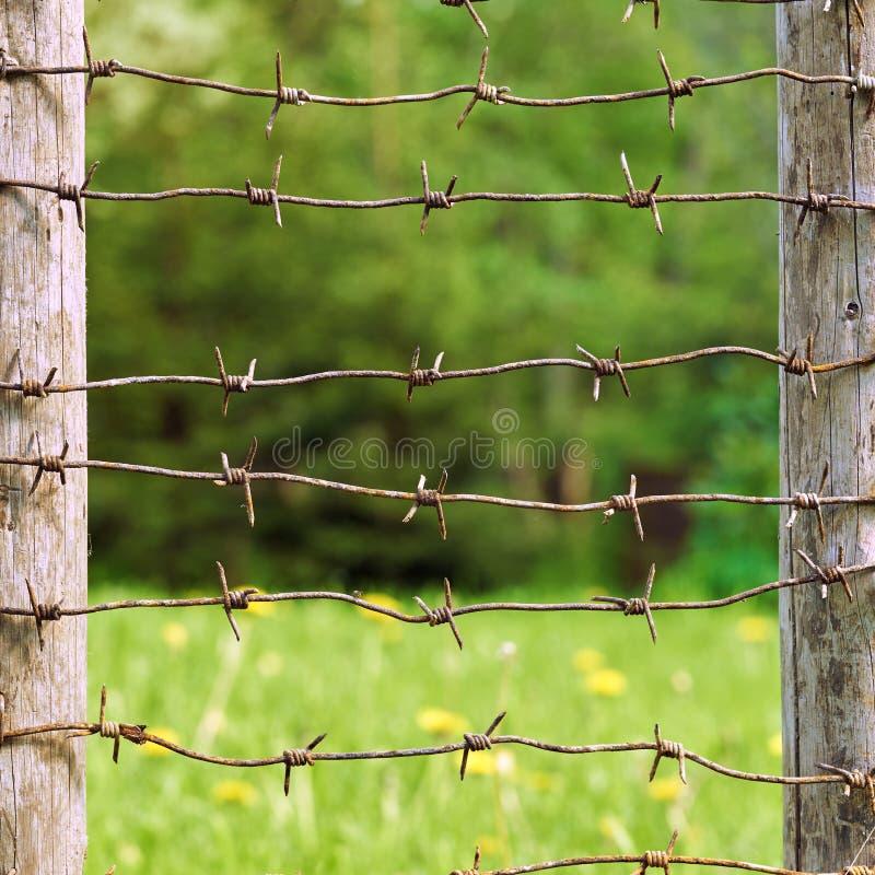 Fils barbelés rouillés étirés entre les poteaux en bois de barrière avec le pré vert sur le fond photos libres de droits