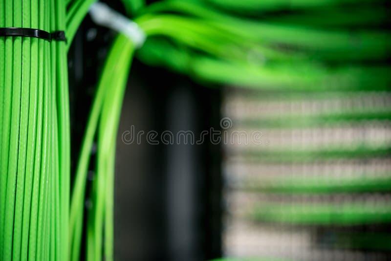 Fils verts reliés au réseau attachés dans un paquet dans le serveur images libres de droits