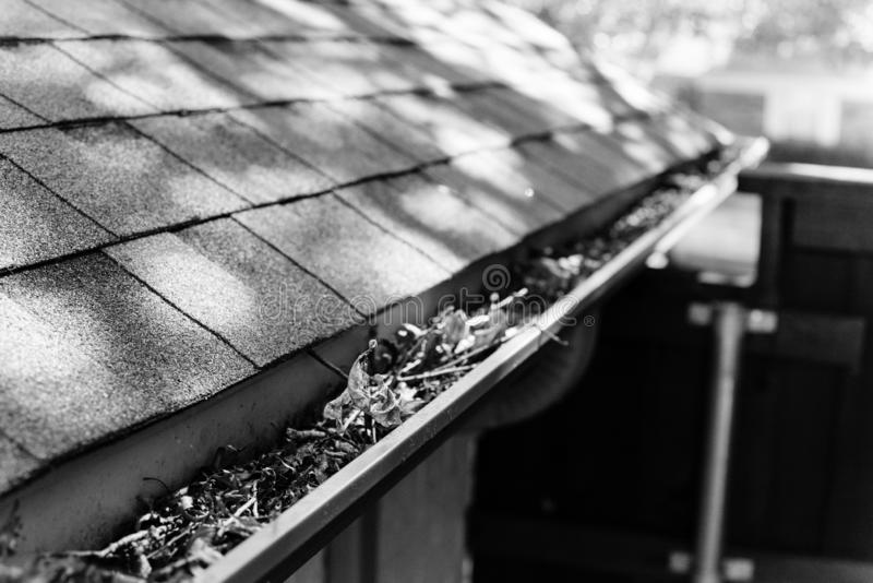 Filtered image gutter clogged by dried leaves and messy dirt need clean-up. Vintage tone gutter near roof shingles of residential house full of dried leaves and stock photography