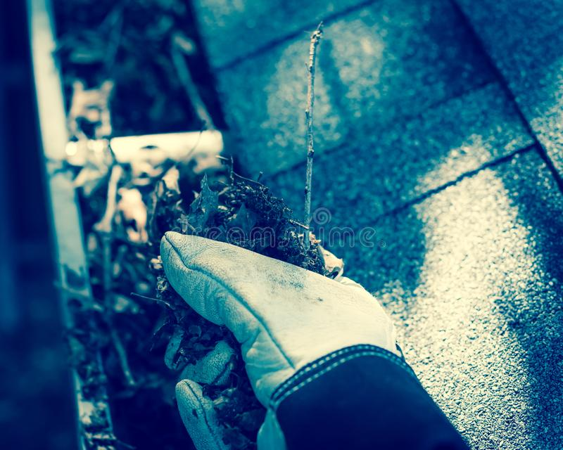 Filtered image top view hand in gloves on ladder cleaning dried leaves from gutter in America. Vintage tone close-up man hand with gloves on ladder cleaning royalty free stock photos