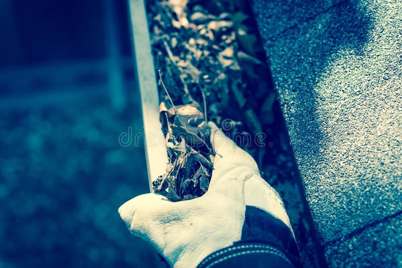 Filtered image top view hand in gloves on ladder cleaning dried leaves from gutter in America. Vintage tone close-up man hand with gloves on ladder cleaning stock images