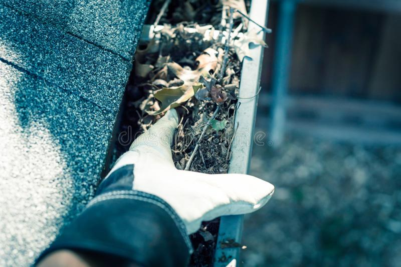 Filtered image top view hand in gloves on ladder cleaning dried leaves from gutter in America. Vintage tone close-up man hand with gloves on ladder cleaning stock photos