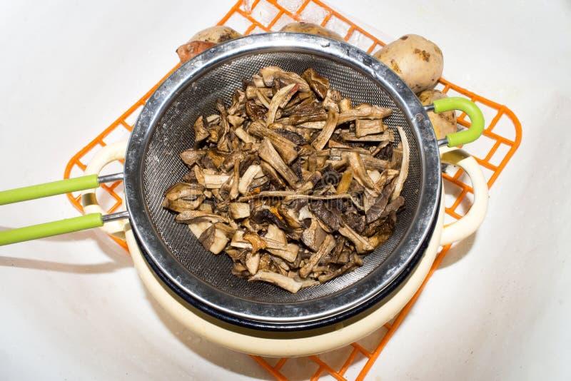 Filtration von Pilzen im Sieb stockbild