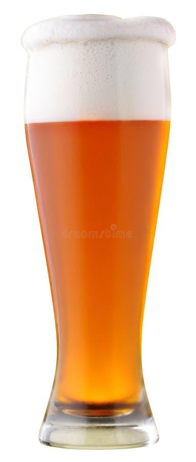 filtrerad öl inte royaltyfri foto