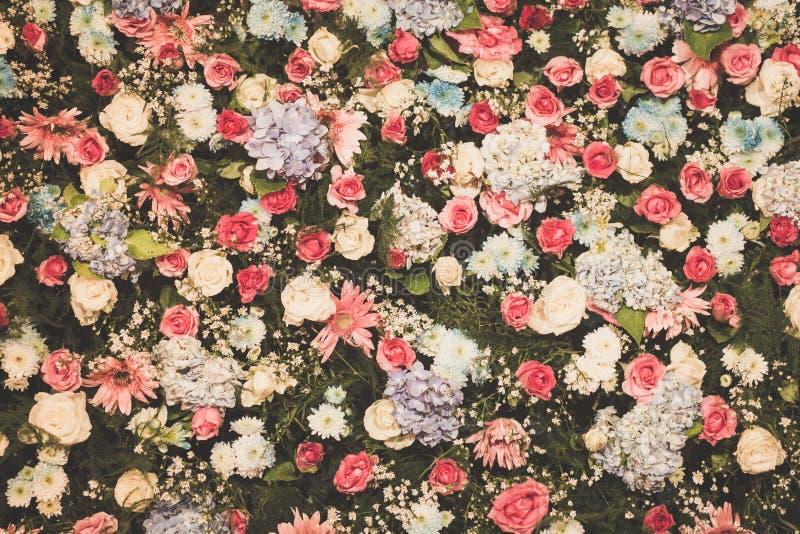 Filtrerad bakgrund, tapet av härlig blommabröllopgarnering fotografering för bildbyråer