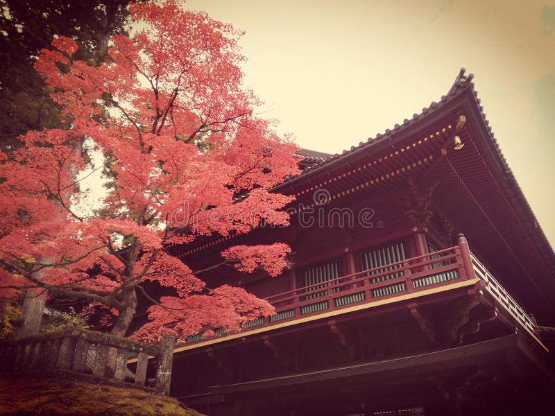 Filtro de Nikko imagenes de archivo