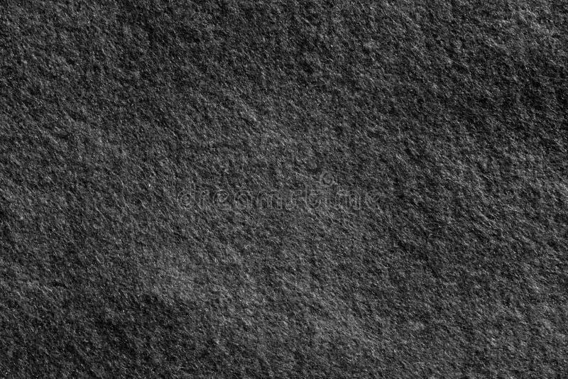 Filtyttersida i svartvitt arkivbilder