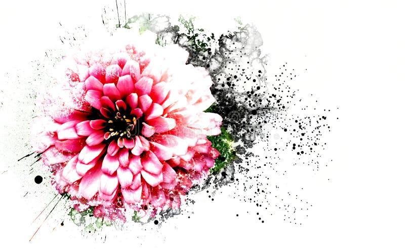 Fim abstrato acima da flor cor-de-rosa bonita que floresce no parque público ilustração stock