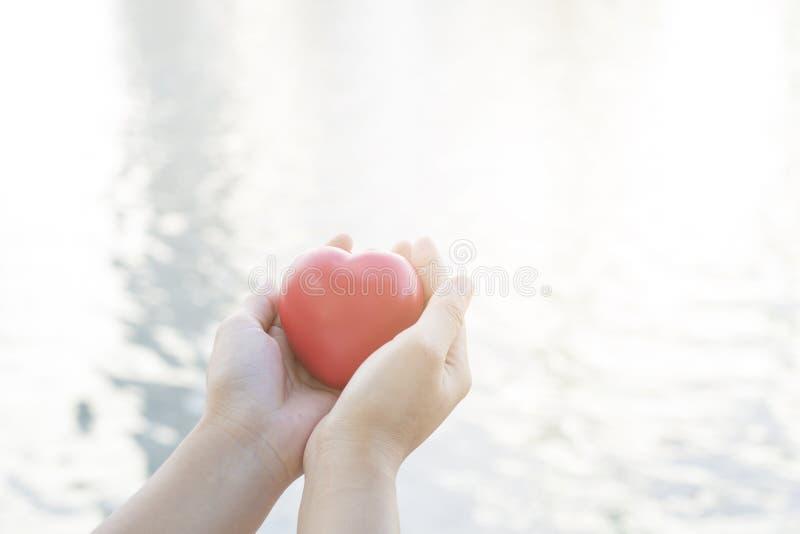 fim acima da mão que guarda o coração vermelho no backgrou macio do rio e da água imagem de stock