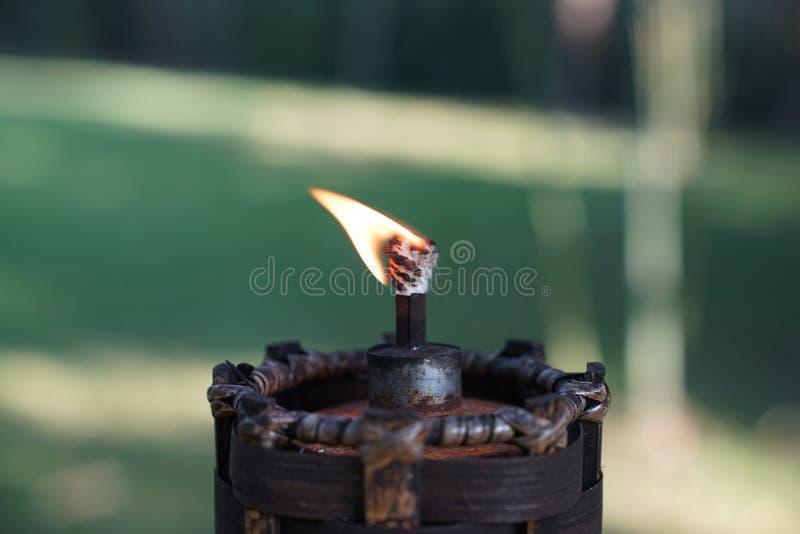 Fim acima da tocha e fogo no jardim com fundo verde do borrão foto de stock royalty free