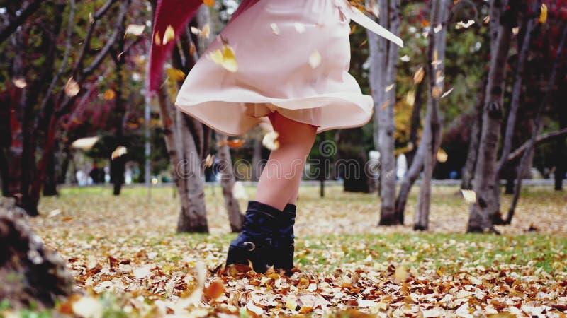 Fim acima da vista das folhas da calha dos pés das mulheres em um parque da queda do outono fotos de stock