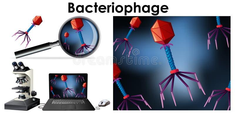 Fim acima do objeto isolado do bacteriófago do vírus ilustração royalty free