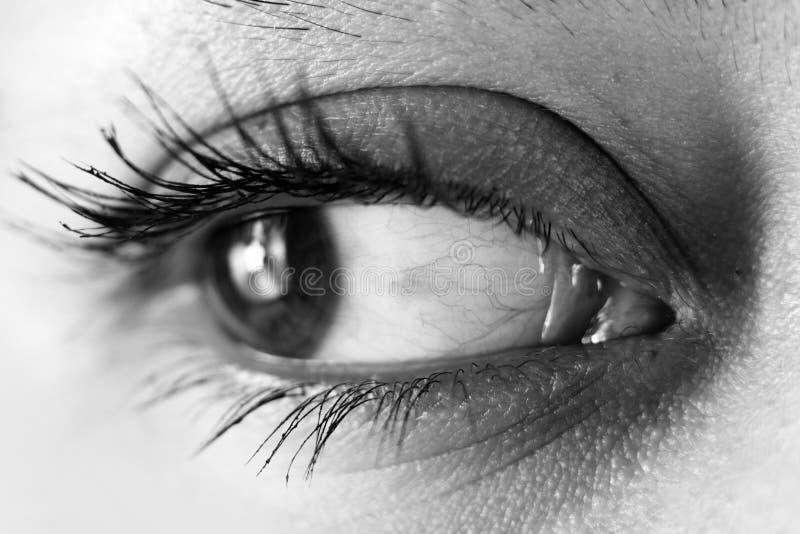 Close-up do olho fotos de stock