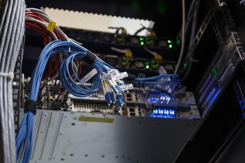Fim acima dos fios do Internet ou do cabo de remendo torcido óticos no fundo borrado Equipamento técnico para o terminal celular  imagem de stock royalty free