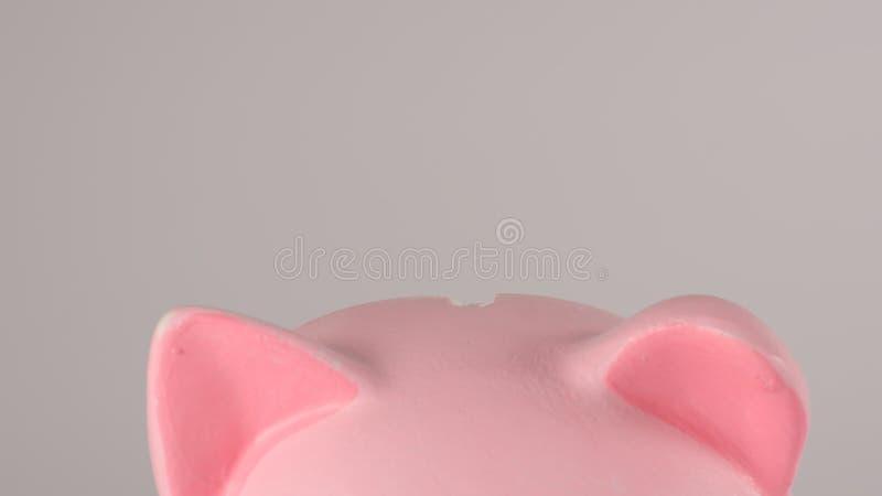 FIM ACIMA: Moneybox leitão cor-de-rosa foto de stock royalty free