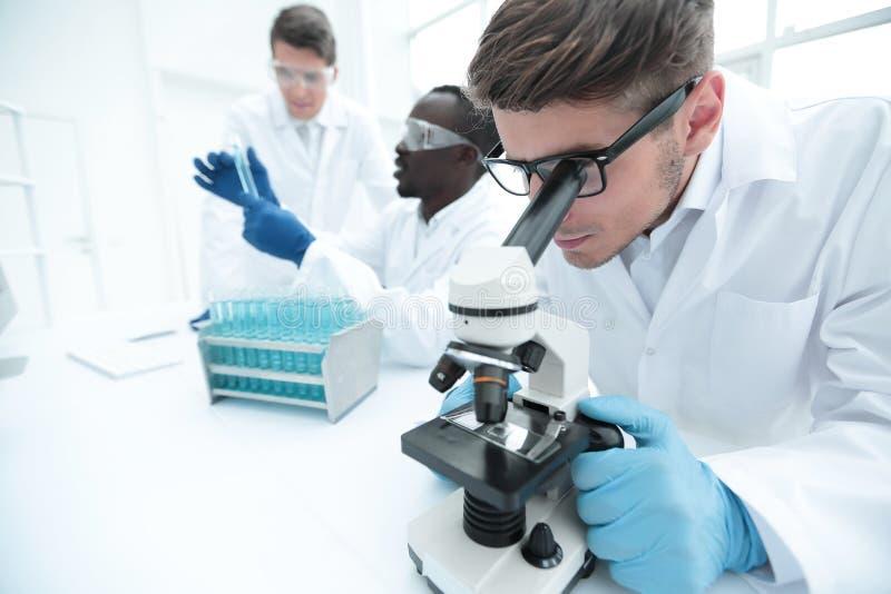 Fim acima o cientista usa um microscópio para a pesquisa imagens de stock royalty free
