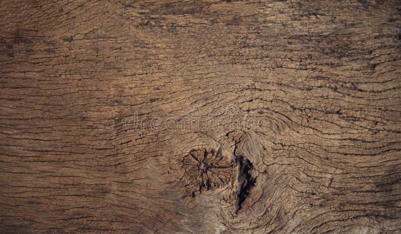 Fim bonito textured acima do uso de madeira da casca como nat de múltiplos propósitos foto de stock royalty free