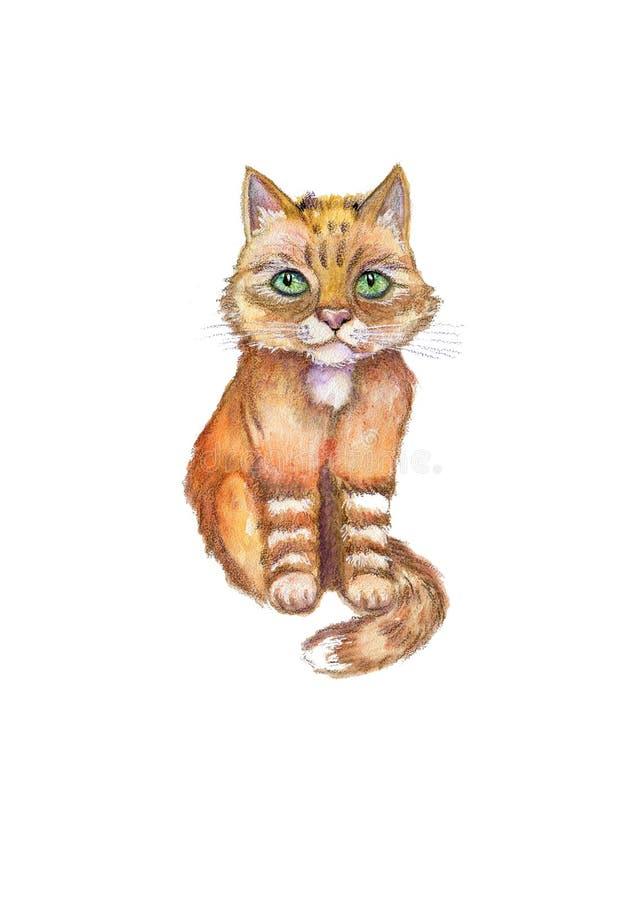 Fim da aquarela acima do retrato do gato vermelho dos desenhos animados isolado no fundo branco ilustração stock