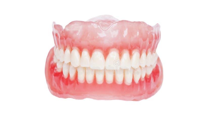 Fim da dentadura acima fotografia de stock royalty free
