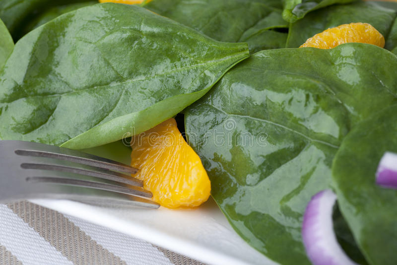 Fim da salada do mandarino do espinafre acima fotos de stock