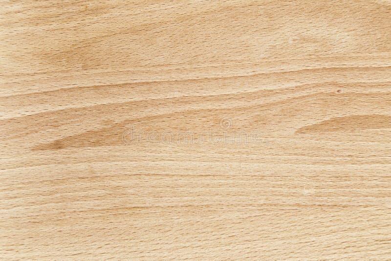 Fim da textura da madeira de faia acima foto de stock royalty free
