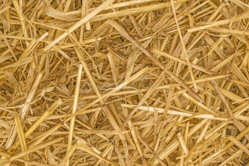 Fim da textura de Straw Background acima imagens de stock royalty free