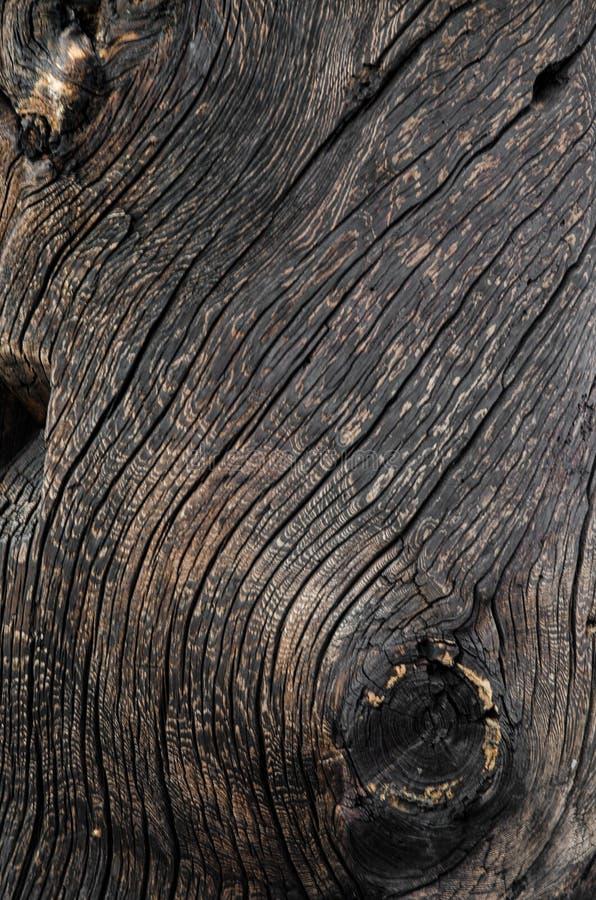 Fim de madeira envelhecido vintage da textura do fundo do marrom escuro acima imagem de stock royalty free