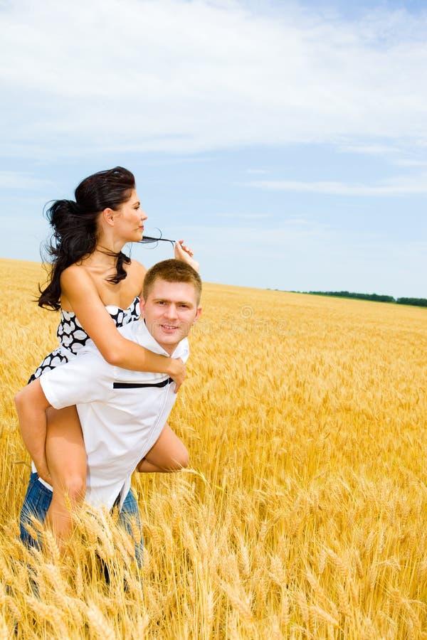 Fim de semana em um campo de trigo imagem de stock royalty free