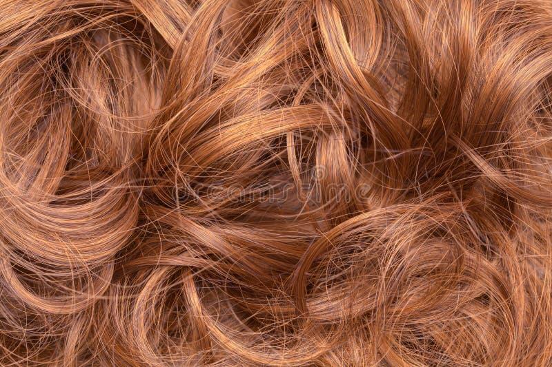 Fim desarrumado do cabelo acima imagens de stock royalty free