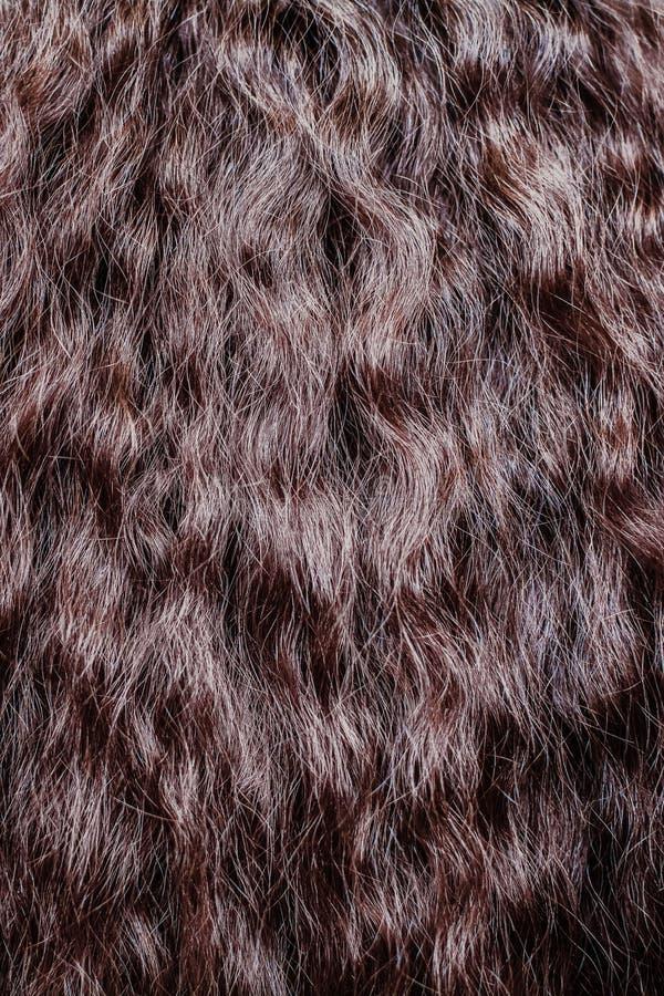 Fim do cabelo de Brown acima texturas e fundo fotos de stock