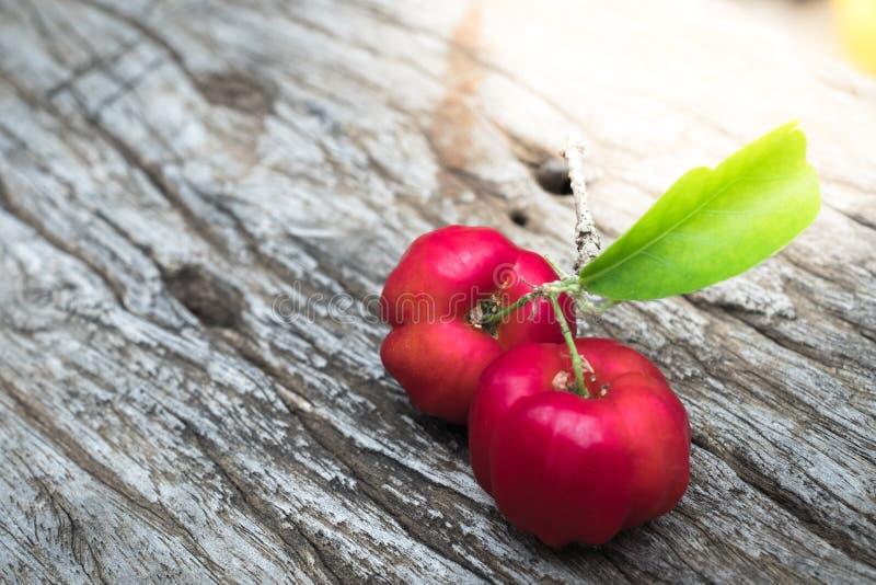 Fim do fruto do Acerola acima no fundo fotografia de stock